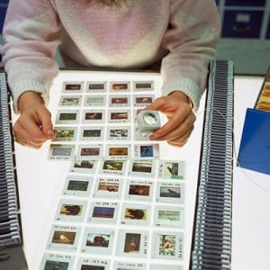 Our photographers would send us several rolls of film that we would have developed into slides, and we would search for the best images using a magnifying loop and light table.